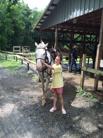 Townsend, Τενεσί: Cades Cove Riding Stables