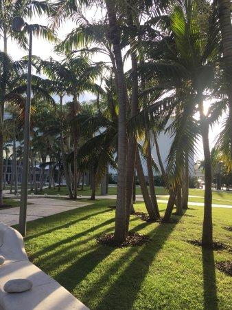 Sanctuary South Beach: photo1.jpg