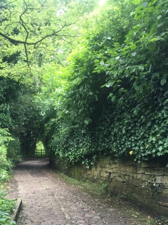 Bolton, UK: Moses Gate Country Park
