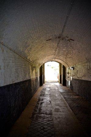Newhaven, UK: Spooky entrance