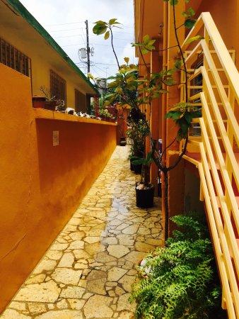 Casa de Amistad: photo1.jpg
