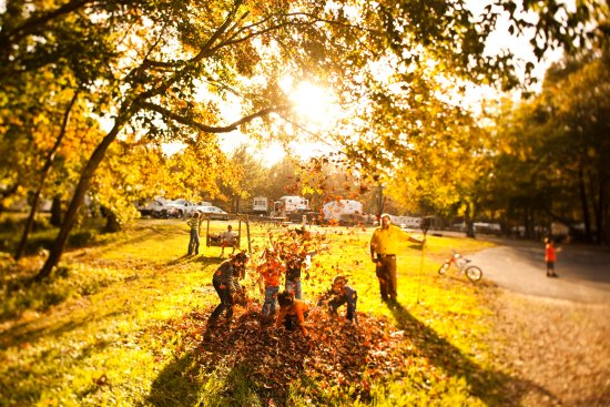 Williamsburg KOA Campground: A beautiful Fall in Williamsburg