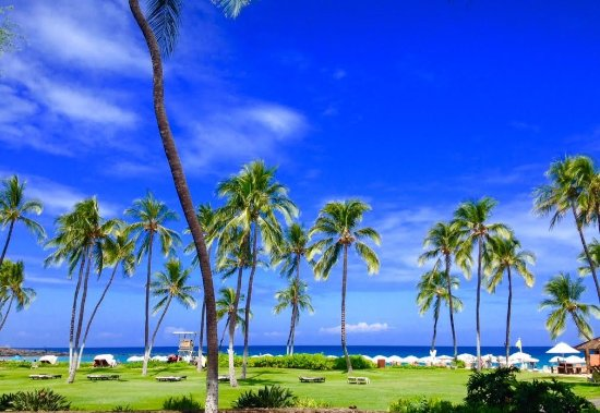 Mauna Kea Beach Hotel, Autograph Collection: What a beautiful view from our room.