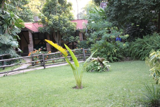 Outpost Lodge: le parc et les chambres