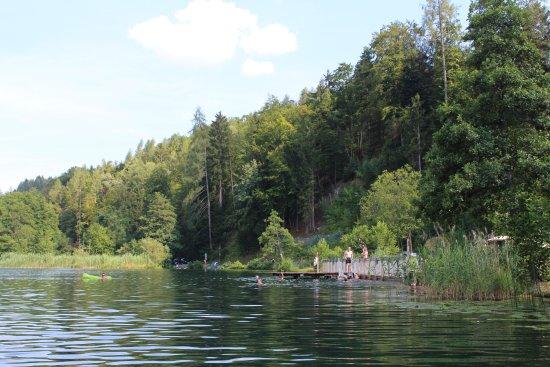 Sportpension Aichholzer: Naturbadesee