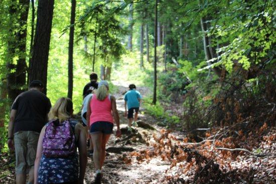 Oberaichwald, Austria: geführte Wanderung