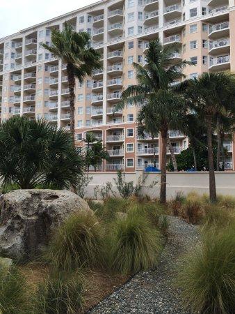 Imagen de Marriott's Aruba Surf Club