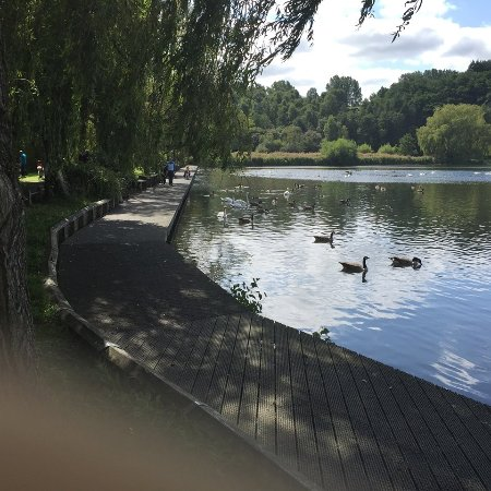 Bolton, UK: At Moses Gate Country Park