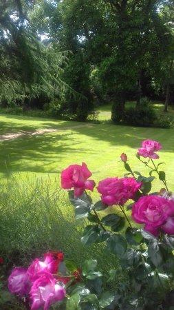 Barwick, UK: Garden 2