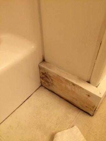 Belfast, ME : mold in the bathroom