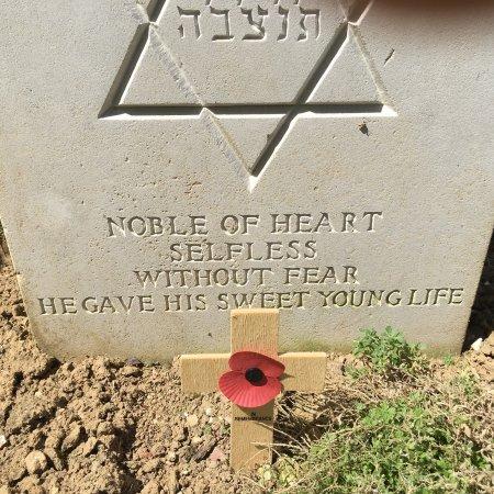 Somme, France : photo8.jpg