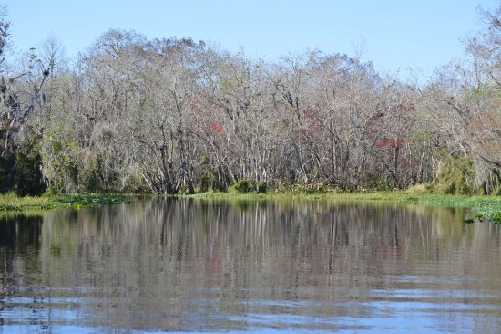 DeLand, FL: The views going down river offer something new at every turn.