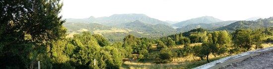 Emilia-Romagna, Italien: 20160709_191050_large.jpg