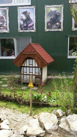 Kerzers, Szwajcaria: 20160713_123724_large.jpg