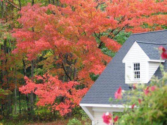 Snow Squall Bed and Breakfast: Autumn in Maine