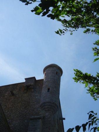 Labastide-de-Virac, Francia: Belle Echauguette du Château de Roure