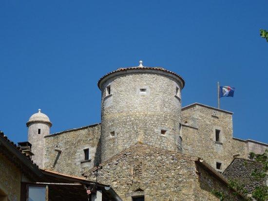 Labastide-de-Virac, Francia: L'arrière du Château de Roure