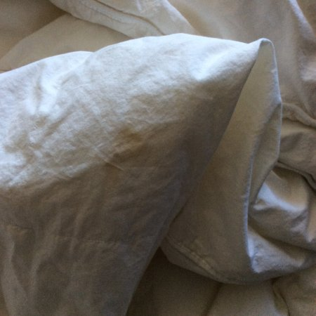 Reston, VA: Bedding on bed at check-in