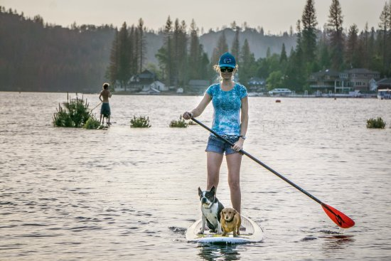 Paddle Boarding on Bass Lake with the pups.