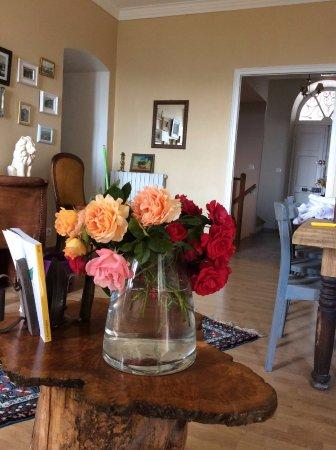 Venaco, Francia: Espace commun et entrée