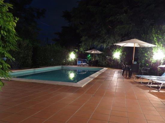 Bosco, İtalya: la piscina in notturna