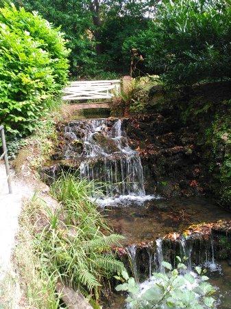 Peque a laguna de la noria picture of jardin botanico for Jardines de la reina gijon