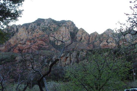 Garlands Oak Creek Lodge: The red rock hills behind the lodge.