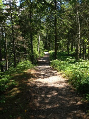 Lake Breeze Motel Resort: Hiking Trail at Lester Park 10 Minutes away