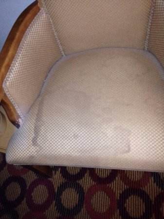 BEST WESTERN Green Bay Inn Conference Center : Stain on chair in the room