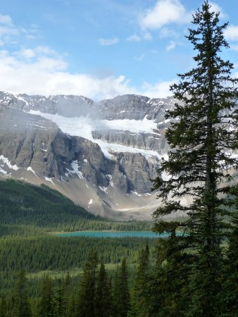 Canadian Rockies Alpine Hiking Day Tours: Bow Lake and Crowfoot Glacier from Lake Helen hike