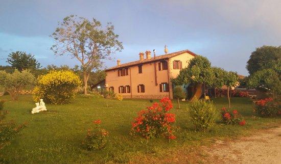 Province of Macerata, Italy: Agriturismo La Collina Dei Ciliegi Di Leonida Appignanesi