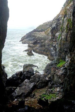 Florence, OR: Sea Lion Cave