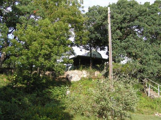 Tarpley, TX: The cabin from the backyard
