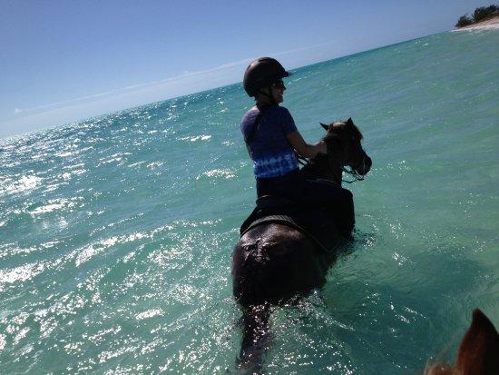 Ocean Club West: HOrseback riding in the wonderful water!