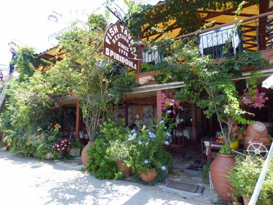 Sivota, Grekland: Η ταβέρνα εξωτερικά