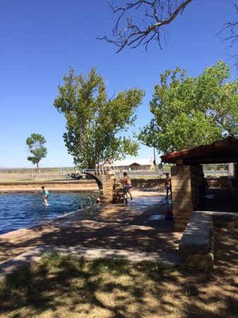 Toyahvale, TX: High Diving Board