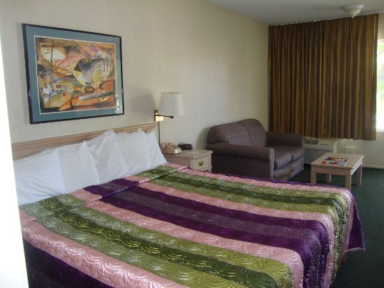 Vagabond Inn Reno : King Bed