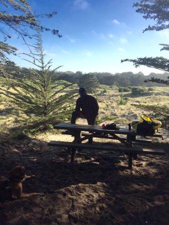 Bodega Dunes Campground: Bodega Bay Dunes Campground - site #01