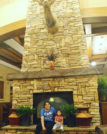 MCM Elegante Lodge & Suites: IMG_20160710_222336_large.jpg