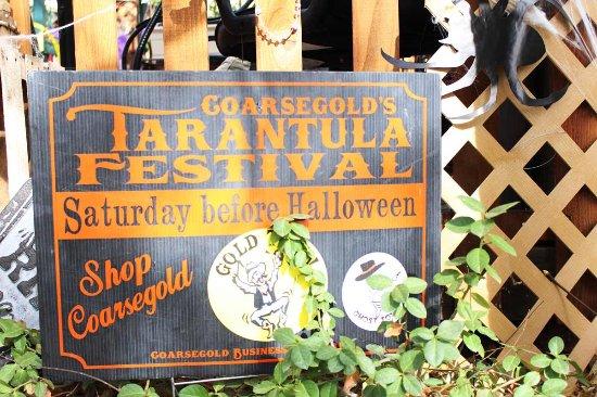 Coarsegold, แคลิฟอร์เนีย: Tarantula Festival.