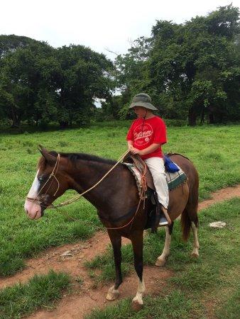 Indiana Horse Tours: photo0.jpg