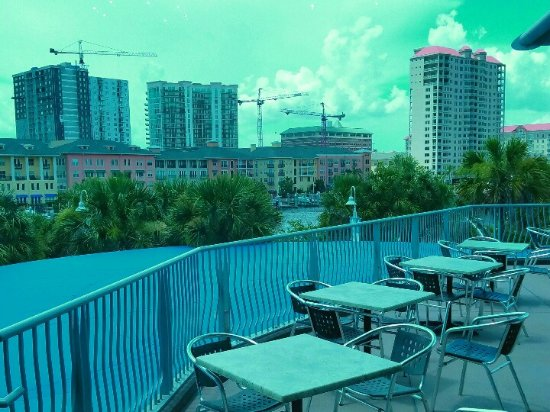 Tampa Bay History Center: Beautiful view from roof top dining area