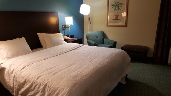 Hampton Inn Jacksonville/Ponte Vedra Beach-Mayo Clinic Area Photo