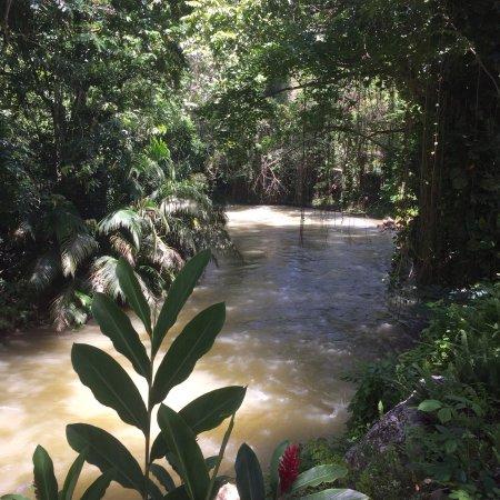 Martha Brae River: photo2.jpg