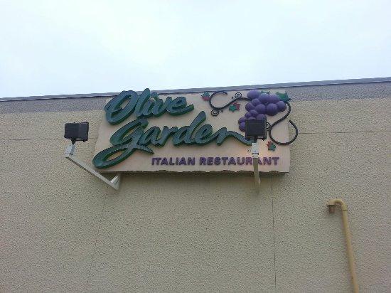 Olive Garden Restaurant : 20160713_175625_large.jpg