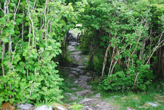 Ennis, Irland: hiking trail on the Burren