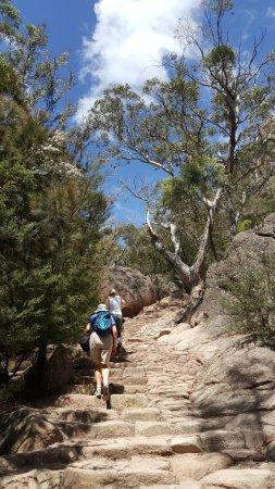 Coles Bay, Australia: 前往酒杯灣的登山步道