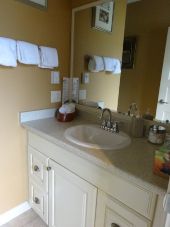 Majestic Ocean Bed and Breakfast: The bathroom was well equipped with Aveda products