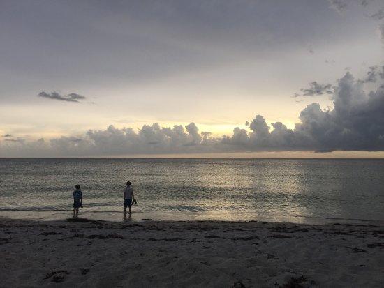 Boca Grande, FL: Had a walk up the beach this evening. It's a long stretch, quite pretty. A fair bit of seaweed a