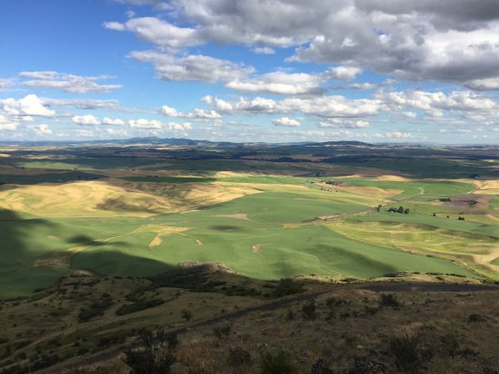 Colfax, WA: Shadows from the clouds